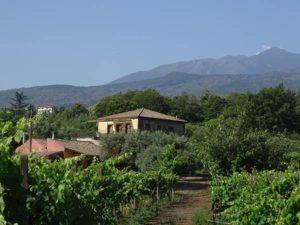 Casa Colonica - Tenuta Madonnina - Etna