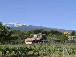 The Tenuta Madonnina-holiday house in Sicily at the foot of Mount Etna