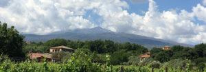Landgoed Tenuta Madonnina - Vakantiehuis Sicilie bij Etna