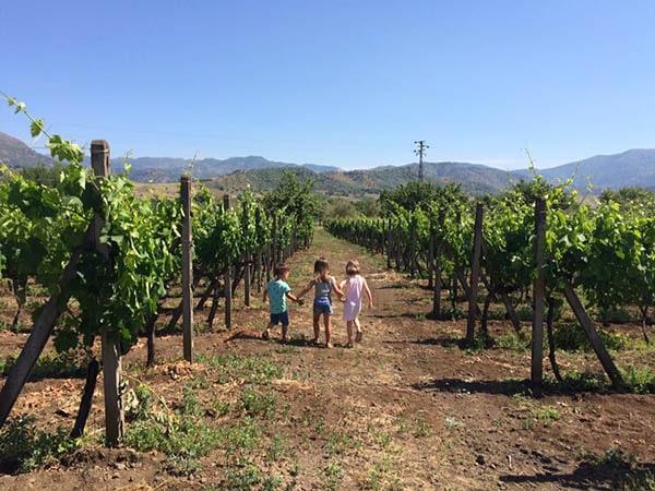 Kinderen wijnveld - Tenuta Madonnina - Vakantiehuis Sicilie