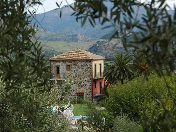 Tenuta Madonnina - palmento vanaf olijfgaard