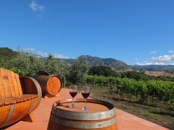 Tenuta Madonnina - wijnvaten terras